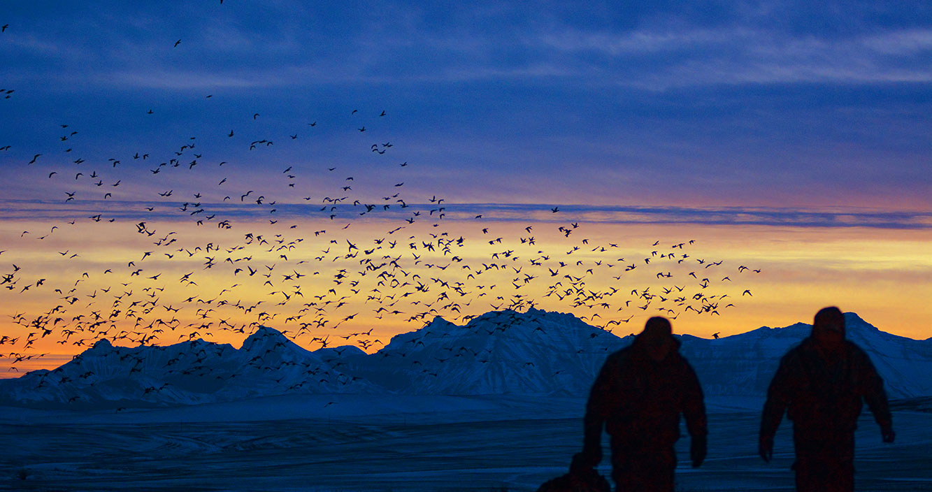 Ducks-Mountains-Sunset-Hunters