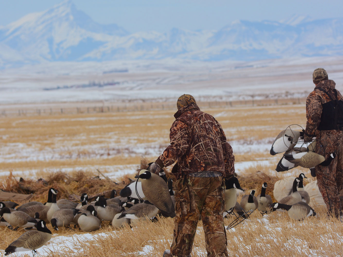 Mountains-Goose-Decoys