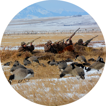 Best waterfowl hunting in North America