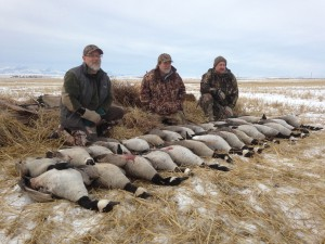 Goose-Hunt-Pose-Field-5
